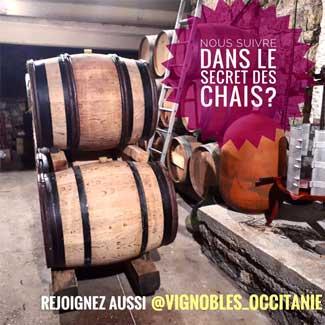 Instagram - vignobles_occitanie