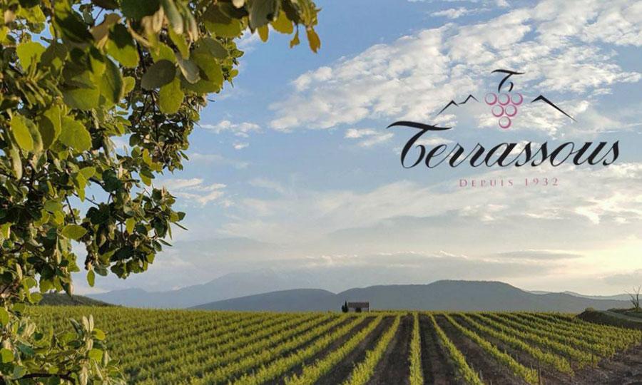 Vignobles Terrassous
