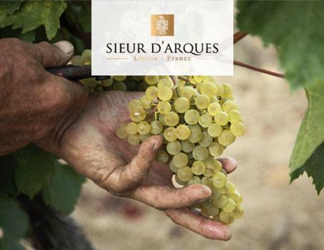 Sieur d'Arques - Chardonnay