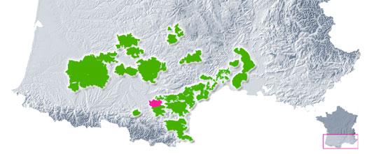 AOP Malepère - Vins du Languedoc